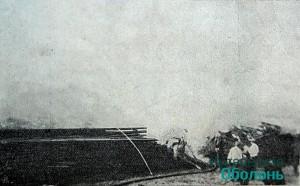 Отстаиванее сосновых штабелей, 1908 го